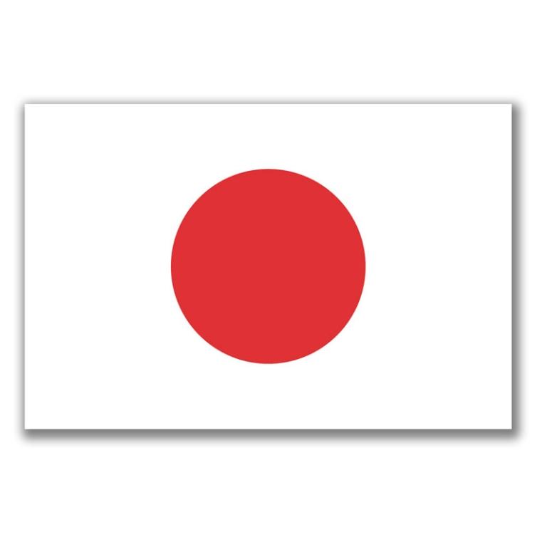 Leder efter en Japansk tale partner
