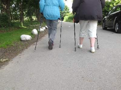 Motionsfrivillige, ÆldreSagen