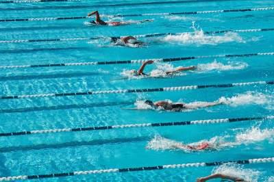 Langturssvømning